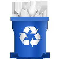 Network Recycle Bin